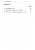VDV-Mitteilung 3305 itcs/RBL/LSA/IBIS Stand und Trents (5) [eBook]